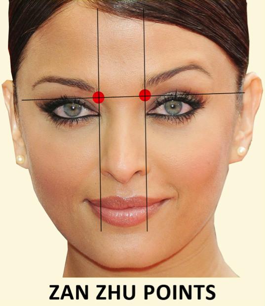 Facial Acupressure and Massage: Part 1 - Healing with Zen